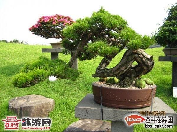 济州岛三日游旅游攻略 - 目的地 - 韩国旅游_韩游网